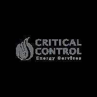 Critical control US logo